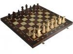 Відбудеться особисто-командна першість ТНЕУ з шахів