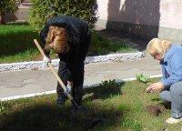 Колектив Чортківського навчально-наукового інституту підприємництва і бізнесу «За чисте довкілля»!